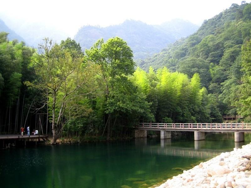 黄山祁门牯牛降景区风景