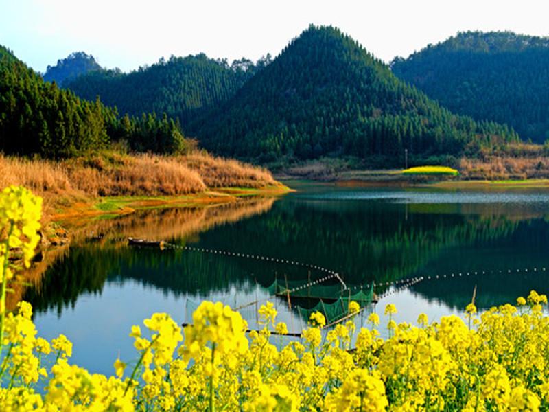 【千岛湖西南湖区(龙川湾)图片】千岛湖西南湖区(龙川