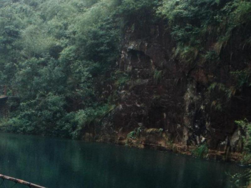 景区门票 浙江景区 > 杭州景区 >大奇山国家森林公园   [· ]  景区介