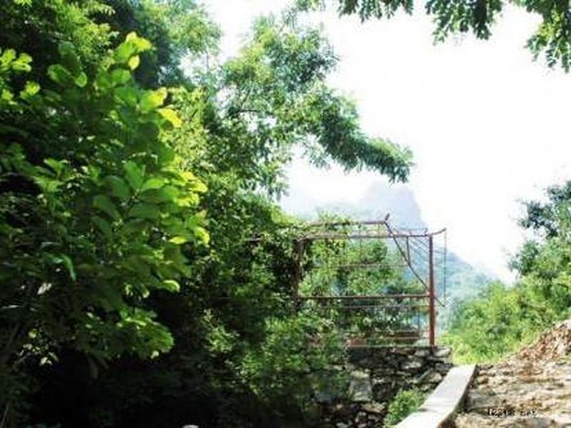 【白蛇谷风景区图片】白蛇谷风景区风景图片,照片_途牛