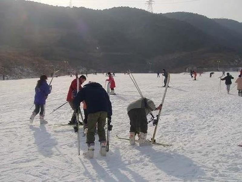 景区门票 北京景区门票 > 门头沟景区门票  >龙凤山滑雪场 >景区图片