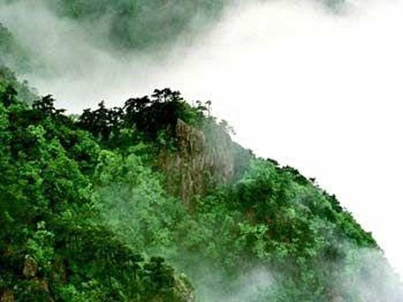 【安吉龙王山图片】安吉龙王山风景图片,照片_途牛