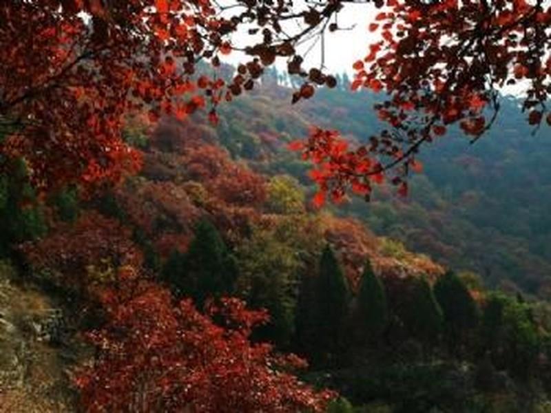 【蒙阴蒙山图片】蒙阴蒙山风景图片