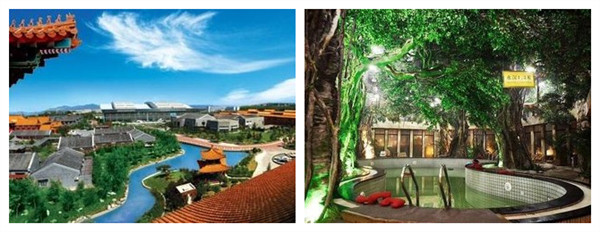 温泉养生会馆有简约中式风格,简明清快,各种亚热带植物掩映其间仿佛置图片