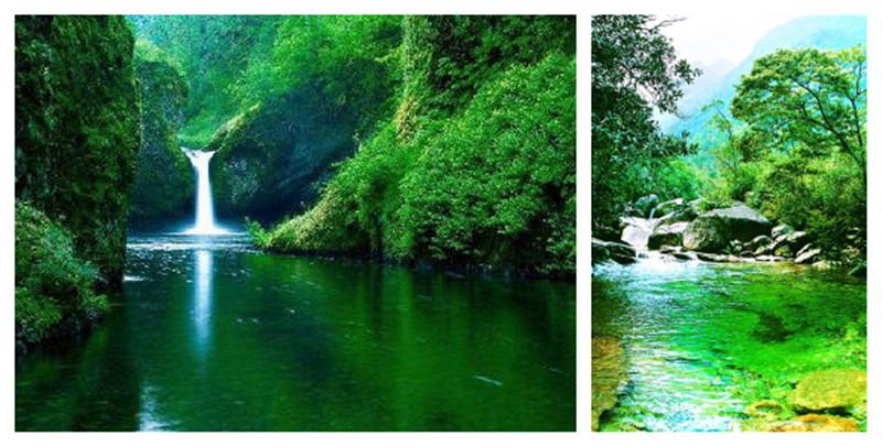 武夷山国家森林公园图片