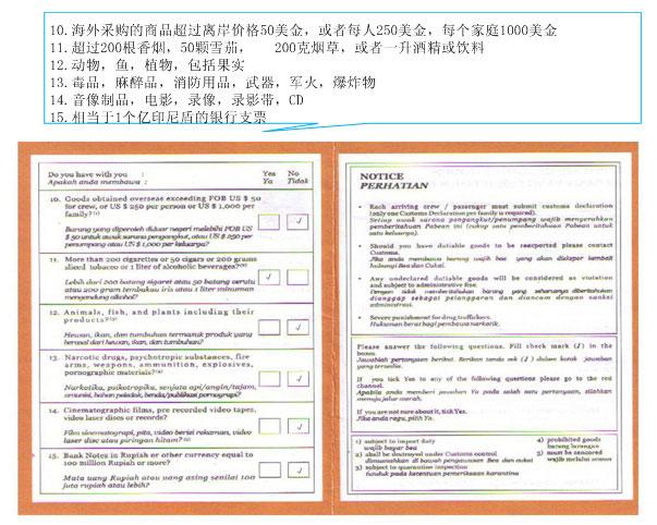 巴厘岛出入境单及海关申报单填写模板
